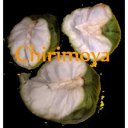 Lyofilizovaná AMAZONSKÁ POCHOUTKA