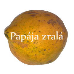 Lyofilizovaná PAPÁJA