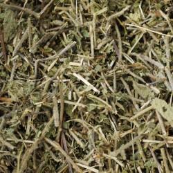 MANAYUPA - RAW řezaná nadzemní část sušené rostliny