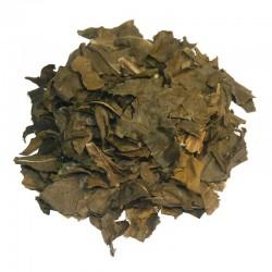 NONI - RAW řezaný sušený list