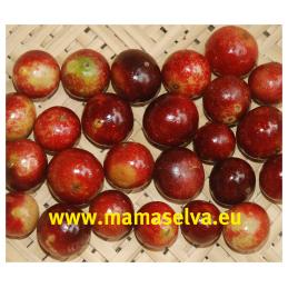 Ovoce Camu Camu
